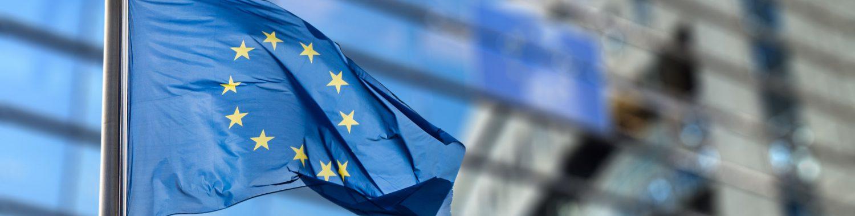 Les aléas d'une jeune pro-européenne en Suisse