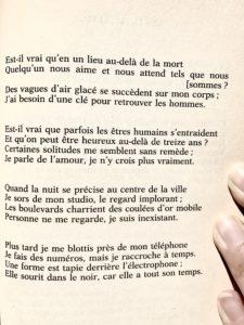 Michel Houellebecq Un Poète Devenu Romancier Des Avenues