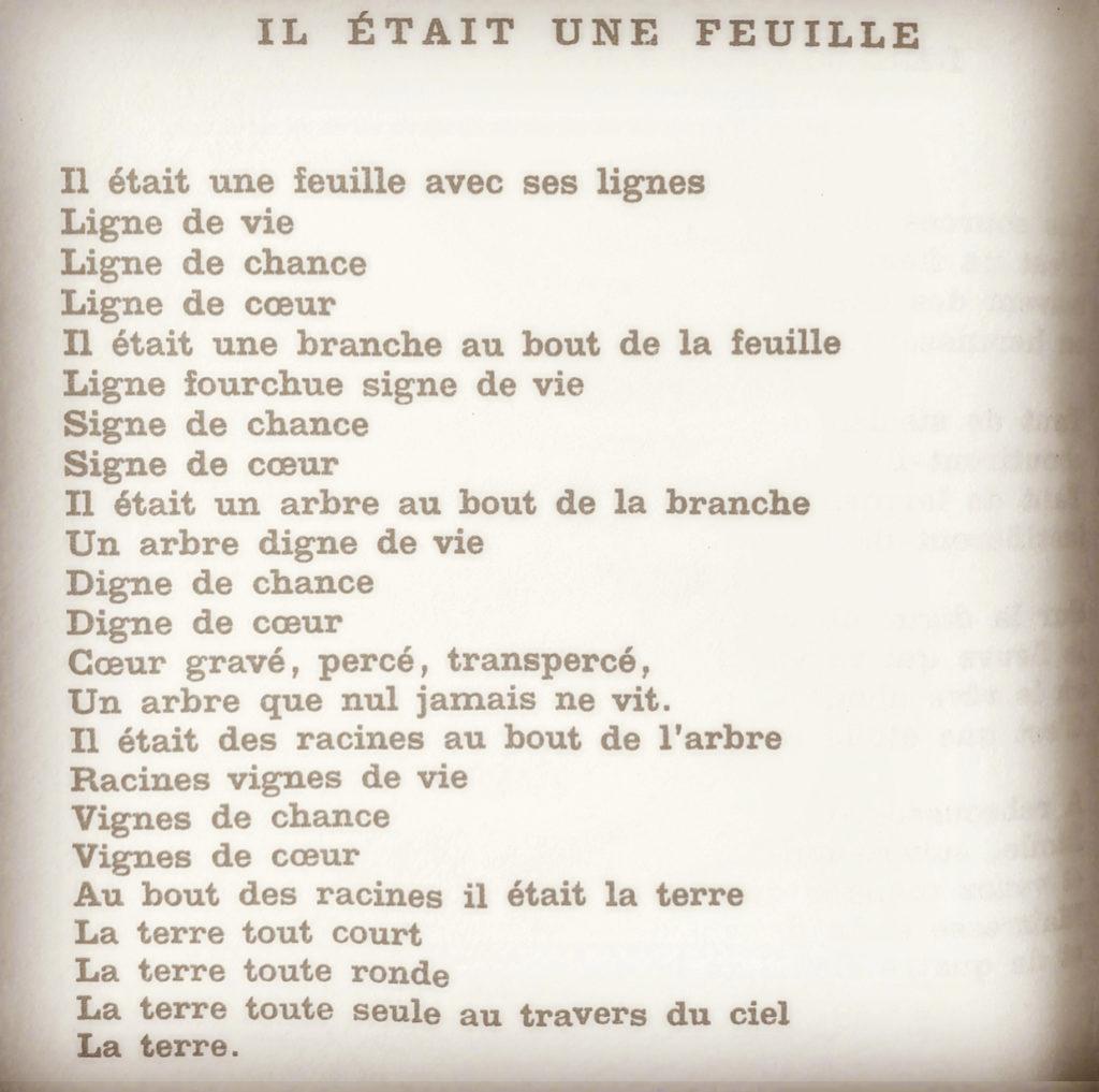 Poète Français Des Avenues Et Des Fleurs