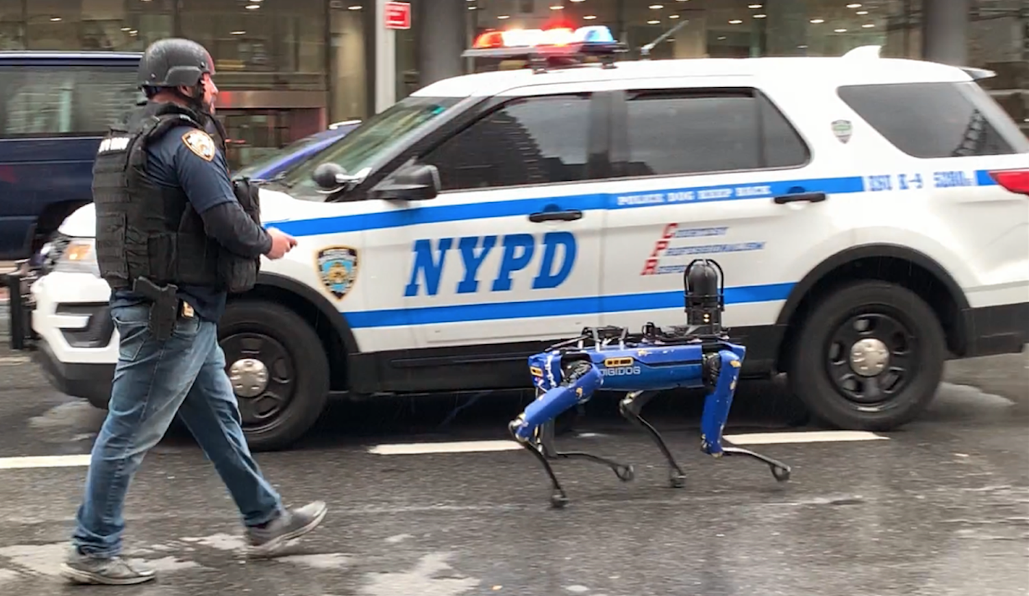 Les New Yorkais renvoient le chien-robot dans sa niche