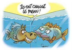 gros_poissons