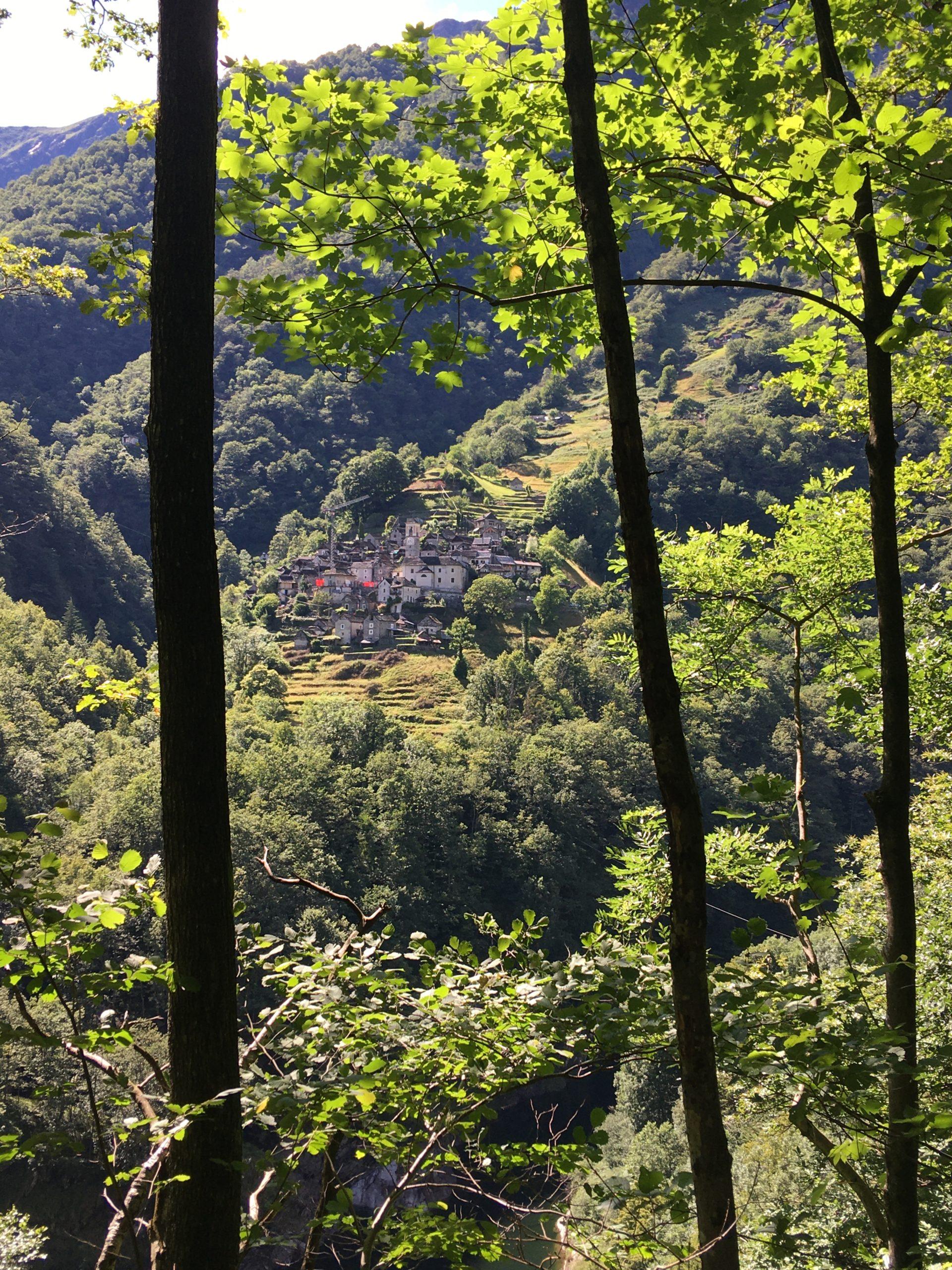 Sur les traces du loup au Val Verzasca