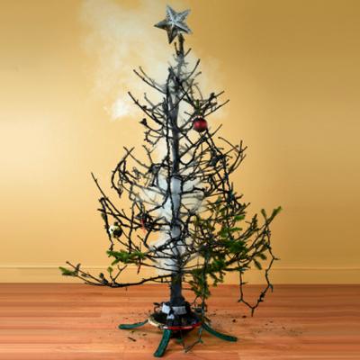 Burning Christmas Tree.The Ex Xmas Tree The Perpetual Tourist