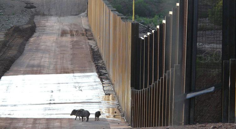 Frontière USA-Mexique