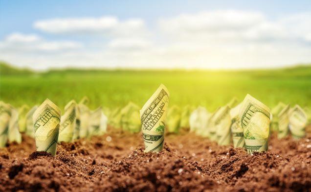 Le capital naturel, nouveau paradigme de l'actionnaire ?