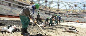 Des travailleurs migrants