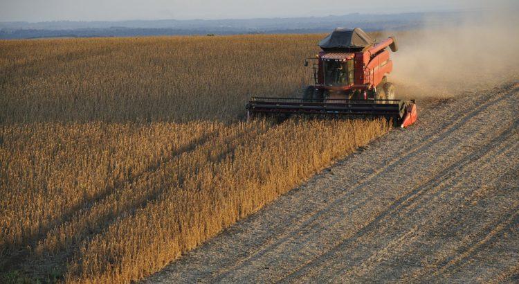 Récolte du soja au Brésil