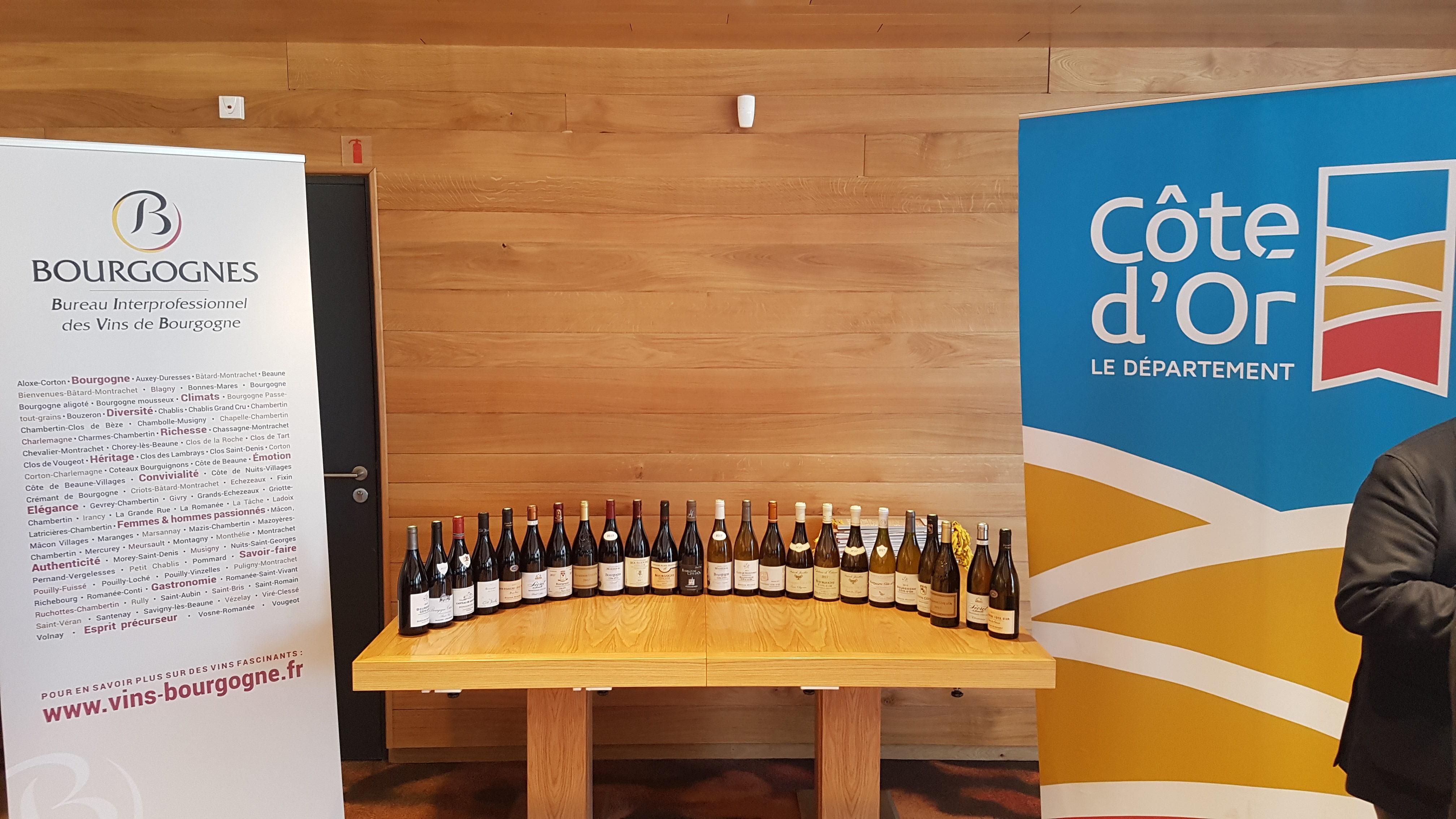 Les promesses des Bourgogne Côte d'Or