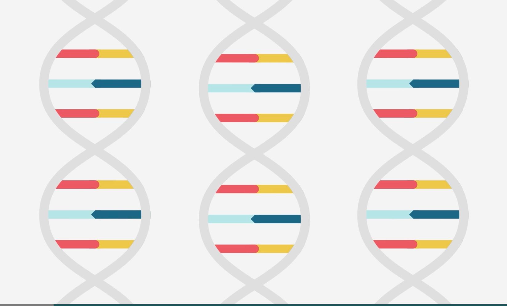 Le dépistage génétique comme prestation de l'employeur