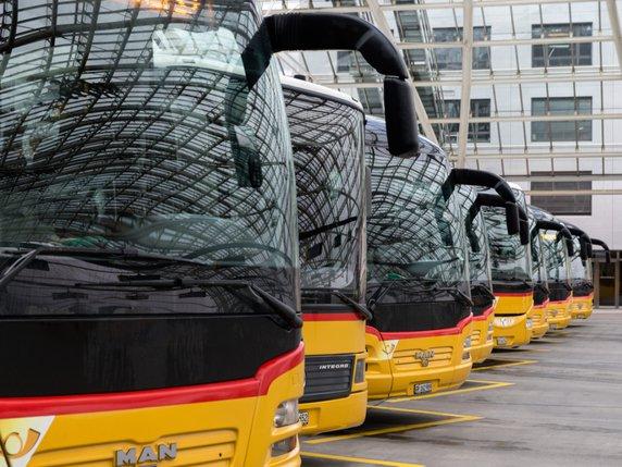 Les bus au cœur de la cohésion sociale