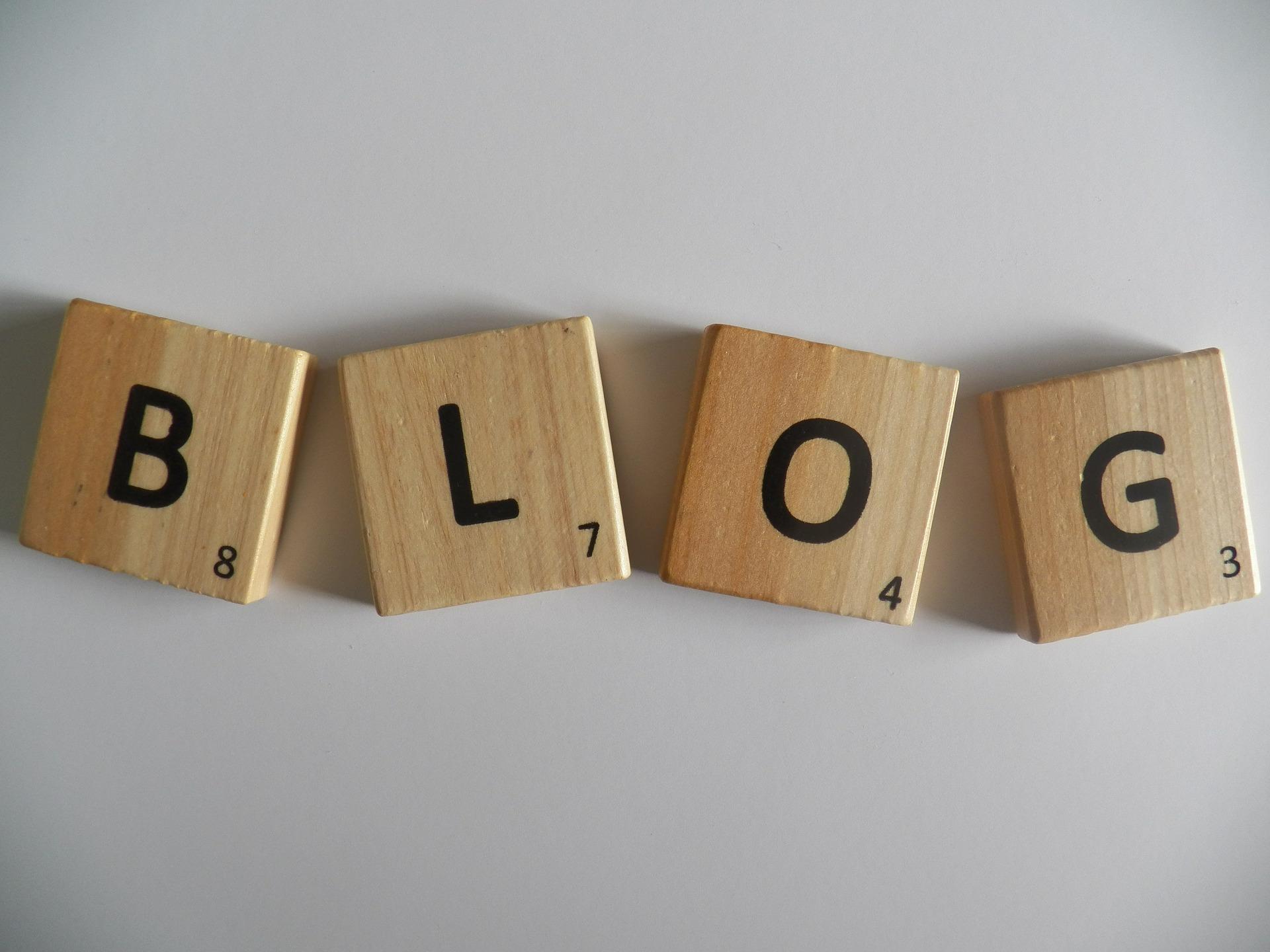 Blog pour les nuls